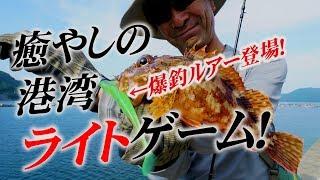 【ライトロック】港湾根魚五目ゲームPART1~加来匠(レオン)