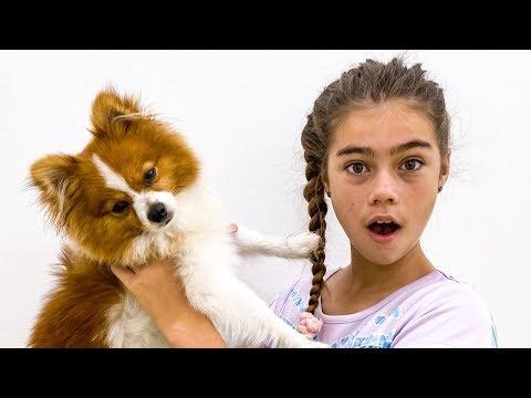 Настя Артем и Мия -истории для детей про собачку Марти
