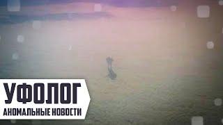 Инопланетянин стоит на облаках, НЛО в Чили и Рио-де-Жанейро/ Подборка НЛО №16 2016