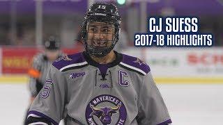 CJ Suess | 2017-18 Highlights