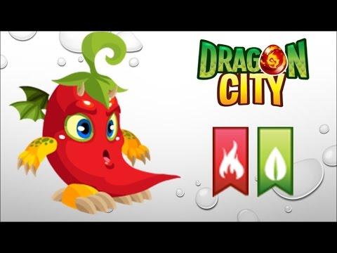 Dragon City - Getting Spicy Dragon 100% (No Hack) - YouTube