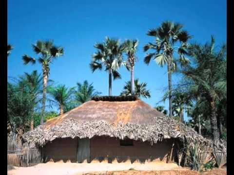 Manjak @ Manjacks Manjaco Culture Et Tradition - Guide Touristique - Guinea bissau.Senegal et Gambia