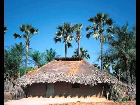 Manjak @ Manjacks Manjaco Culture Et Tradition - Guide Touristique - Guinea bissau.Senegal et Gambia