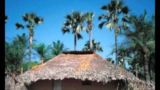 Manjak @ Manjacks Manjaco Culture Et Tradition - Guide Touristique - Guinea bissau.Senegal ...