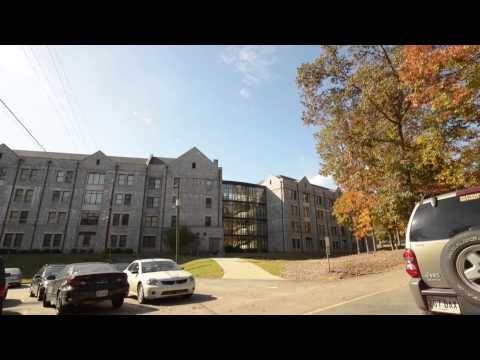 Live the Life: Brookhaven
