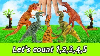 [EN] Let's count 1, 2, 3, 4, 5!! in english, kids english education, collectaㅣCoCosToy