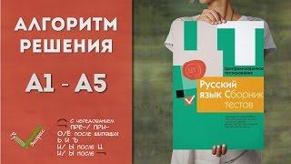 Видеоразбор ЦТ по Русскому [А1-А5 | 2015]