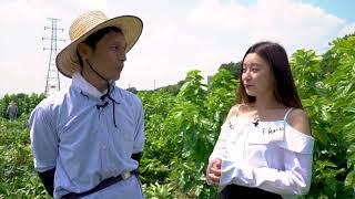 絹女子プロジェクト http://www.takaraginu.com/silkgirls/