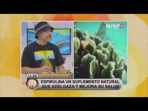 Las propiedades de las algas