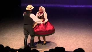 Magyarpalatkai Táncok / Dances from Magyarpalatka (Transylvania)