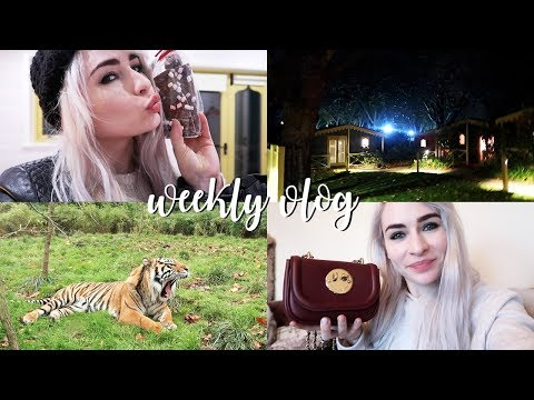 WE STAYED OVERNIGHT IN A ZOO | Weekly Vlog #27