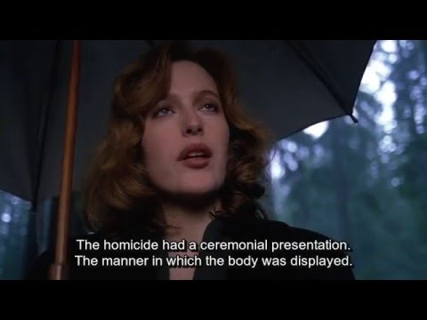 Mulder, toads just fell from the sky!