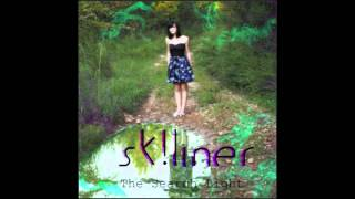 Watch Skliner The Truth video