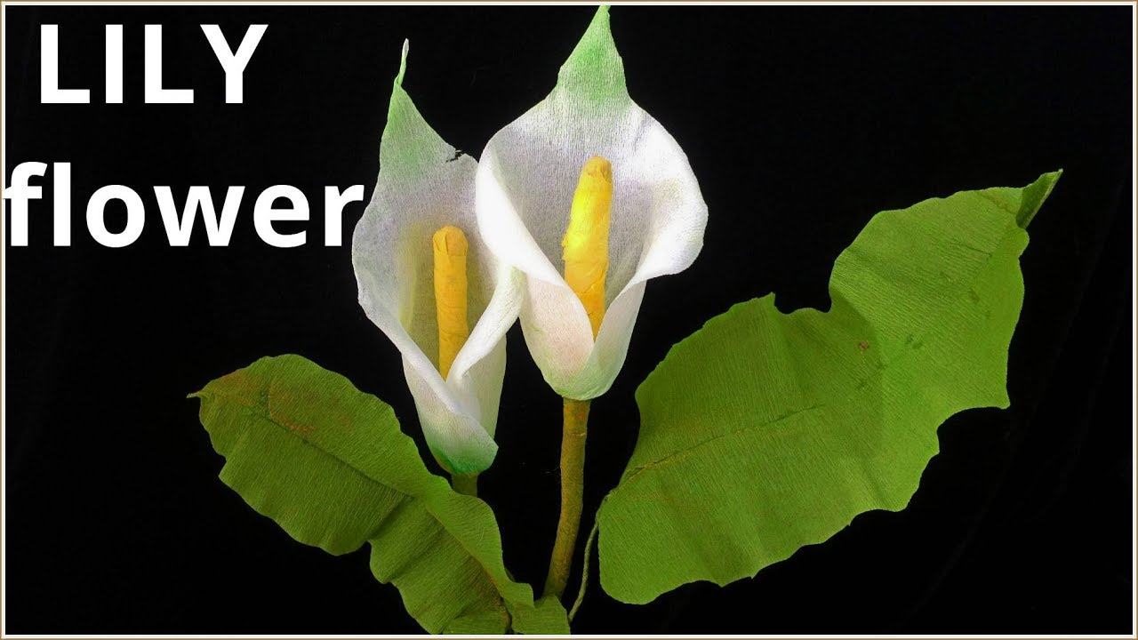 How To Make Calla Lily Paper Flower Diy Room Decor Tissue Crepe