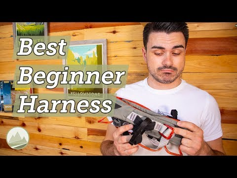 Black Diamond Momentum Harness – Best Entry Level Harness For The Climbing Gym | Sawback Gear