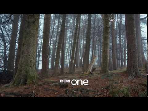 BBC One Forest iden
