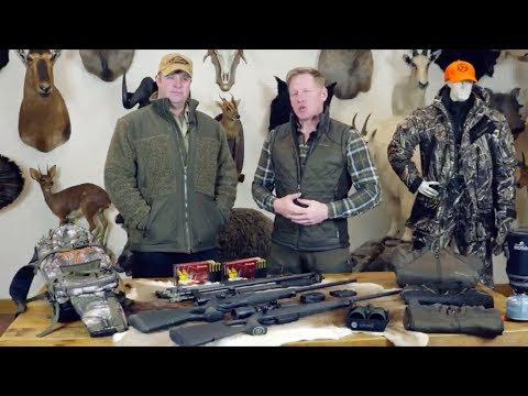Wild Boar Hunting In Hungary