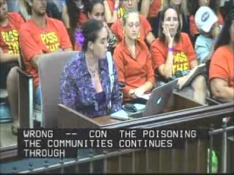 Fern Anuenue Rosenstiel Testifies Kauai County Council Sept  27, 2013