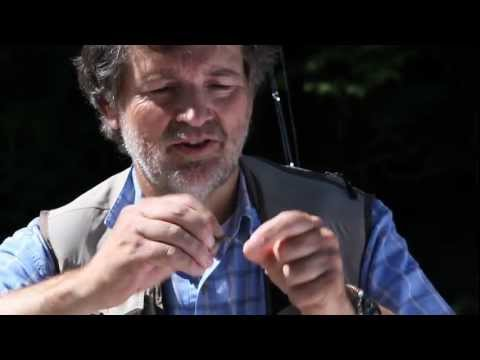 TRAUN RIVER MICRO SNAP Instruction Fly Fishing / Fliegenfischen