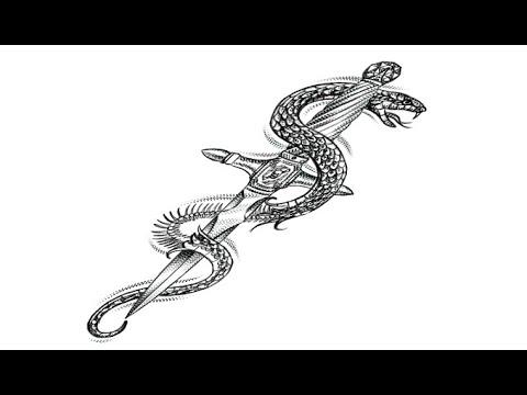 Рисование в фотошопе (эскиз для татуировки)