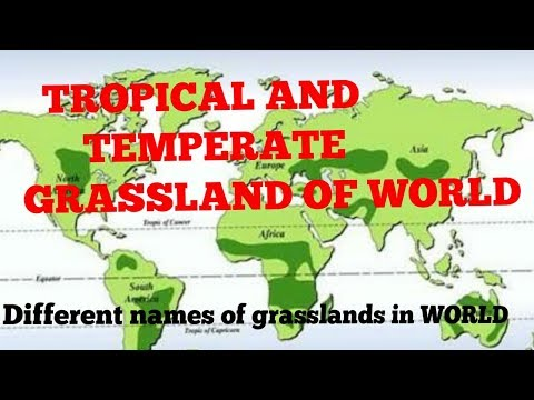 GRASSLAND OF WORLD (TEMPERATE AND TROPICAL)