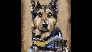 Remember Me! | Max - Romanian Army's Hero Dog