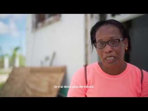 Primrose Barbuda