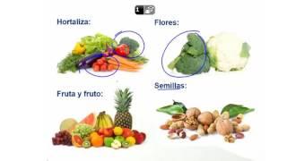 QAII_Capítulo 5.1 Química de las Frutas y Hortalizas