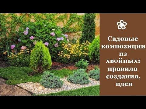❀ Садовые композиции из хвойных растений: правила создания, идеи