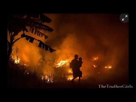 Eco-Apocalypse: Why Indonesia is Having Wild Fires