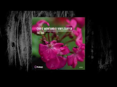 Chris Montana & Vinylsurfer - The Vibe (Original Mix)