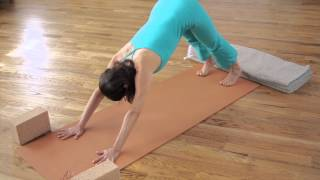 A Short Slow Flow (4) Yoga Practice with Jillian Pransky