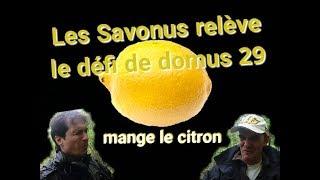 Le défi citron de Domus29 : Défi contre la leucémie Challenge against leukemia
