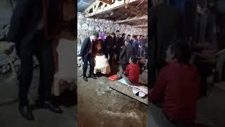 ARAS müzik aslanlı köyü