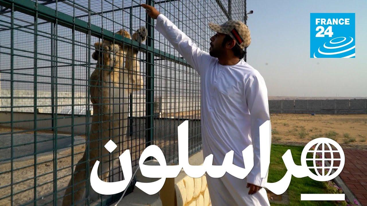 الحيوانات البرية: تهريب بلا حدود  - نشر قبل 46 دقيقة
