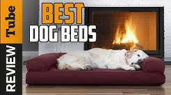 ✅Dog Bed: Best Dog Beds 2019 (Buying Guide)