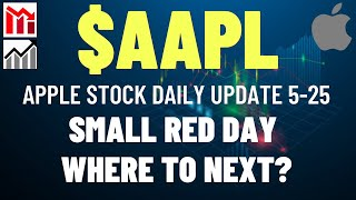 $AAPL APPLE STOCK SMALL RED DAY, WHERE TO NEXT?? Apple Stock Analysis   Live Wellthy Stocks