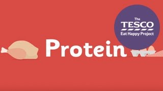 Why do our bodies need protein?