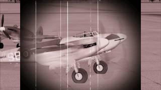 "Havilland Mosquito DH98 ""RAF Photo Reconnaissance"" FSX"