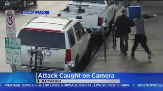 Help Needed To ID Man In Random Attack On Elderly Pedestrian
