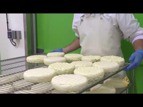 هذا الصباح- تعاونيات لتصنيع الأجبان بالريف الفرنسي  - نشر قبل 1 ساعة