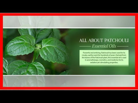 patchouli-oil---uses-and-benefits-of-patchouli-essential-oil