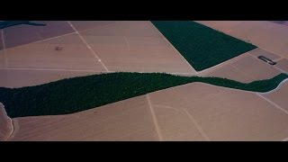 How Soybeans in Brazil Are Hurting Our Planet In the Brazilian state of Mato Grosso, over twenty thousand square miles have been deforested to grow soybeans for animal feed., From YouTubeVideos