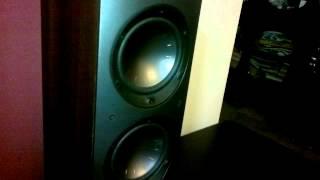 Bassotronics on my MS Aviano 6