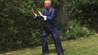 Tai Chi Short Form with Qigong Exercises for Beginners