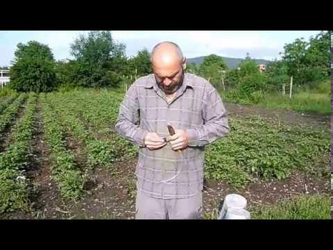 Как сделать опрыскиватель садовый своими руками