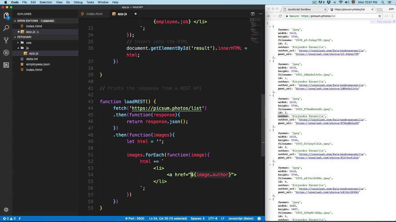 JavaScript Course: Display JSON Data from REST API with Fetch API