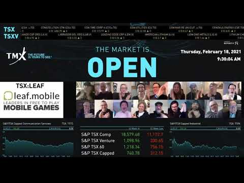 LEAF Mobile实际上打开了市场