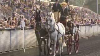 Journée du Cheval 20/09 - 3éme partie : défilé de l'attelage de tradition