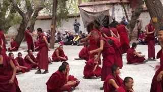 Тибет. Монастырь Сэра. Дискутирующие монахи(Монастырь Сэра («дикая роза») находится на высоте 3660 м у подножья горы Пурбу Чок в 10 км от Лхасы. Это крупней..., 2014-06-07T06:51:04.000Z)